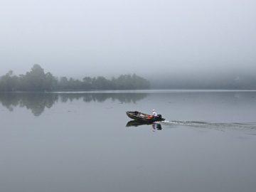 Navigare nella nebbia